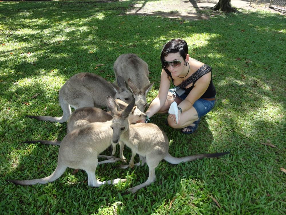 Von Neumarkt nach Australien und zurück - Technikerin Renate Innendorfer beim füttern von Kangaroos.